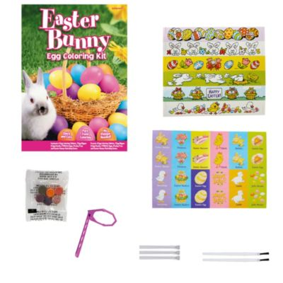Easter Bunny Egg Coloring Kit | Party City