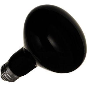 Black Light Spot Bulb