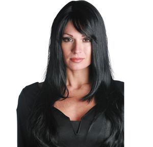 Allure Premium Straight Midnight Black Wig
