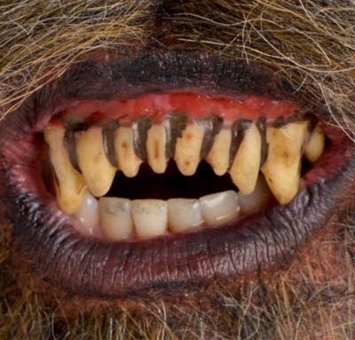 Fitted Werewolf Teeth