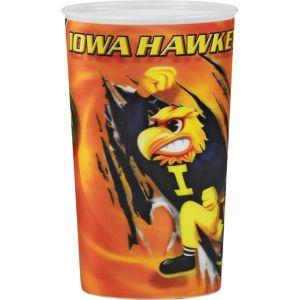 Iowa Hawkeyes 3D Cup