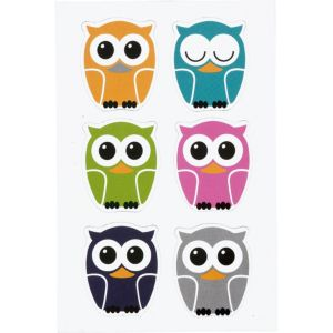 Owl Magnets 6ct