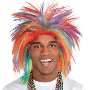 Rainbow Crazy Wig