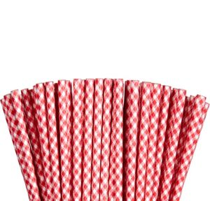 Red Gingham Striped Paper Straws 80ct