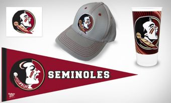Florida State Seminoles Collegiate Care Package