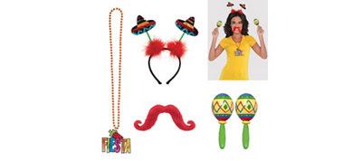 Fiesta Accessory Kit