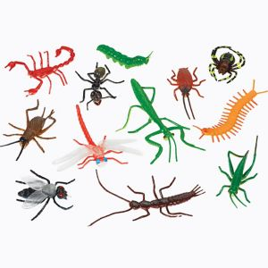 Insect Favor Pack 12pc