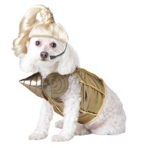 Pup-A-Razzi Pop Queen Dog Costume