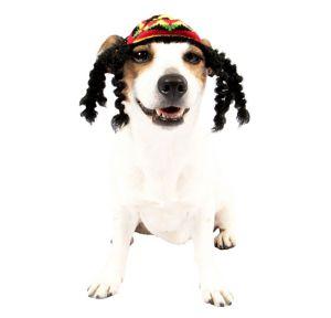 Rasta Dog Costume