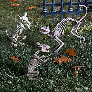 pet cemetery cat and mice idea - Cemetery Halloween Decorations