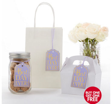 Lilac Best Day Ever Favor Tags 25ct