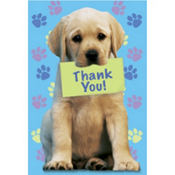 Party Pups Thank You Notes 8ct