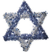 Star of David Wreath 20in