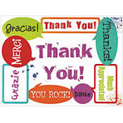 Surprise Thank You Notes 20ct