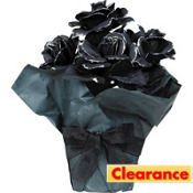 Black Rose Centerpiece 10in