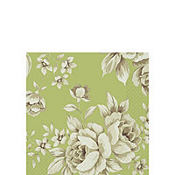 Green Charming Botanical Beverage Napkins 16ct