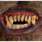 Fitted Werewolf Teeth