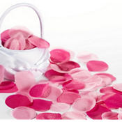 Bright Pink Rose Petals 300pc
