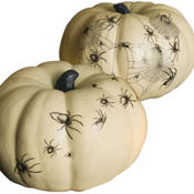 Spider Design Pumpkin Transfers 32ct