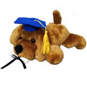Blue Graduation Dog Plush