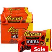 Milk Chocolate Reese's Peanut Butter Cups Minis Pouches 16ct