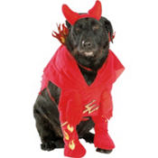 Devil'd Dog Dog Costume