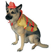 Fire Chief Dog Costume