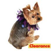 Purple Spider Dog Collar