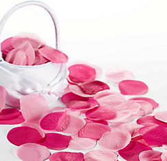 Bright Pink Rose Petals 300ct