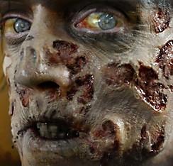 Zombie Rot Wound Prosthetics 4ct