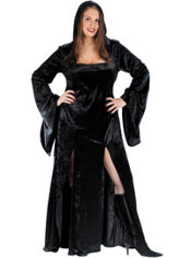 Adult Sultry Sorceress Costume Plus Size