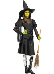 Teen Girl Teenage Wicked Witch Costume
