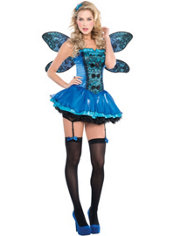 Adult Fairy Beautiful Fairy Costume