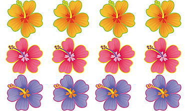 Hibiscus Cutouts 12ct