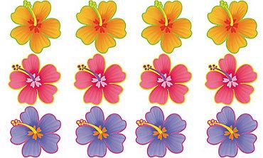 Hibiscus Cutouts 12ct