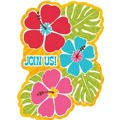 Bright Hibiscus Invitations 20ct