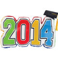 Graduation Autograph 2014 Pillow