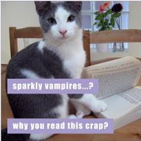 Sparkly Vampires Lolcats Magnet