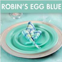 Robin's Egg Blue Wedding Supplies