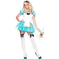 Adult Enchanted Alice Costume