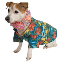 Luau Dog Costume