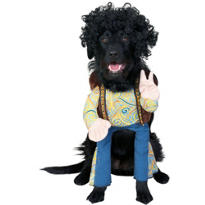 Grrroovy Dog Costume