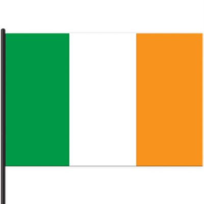 Irish Flag 18in X 12in Party City