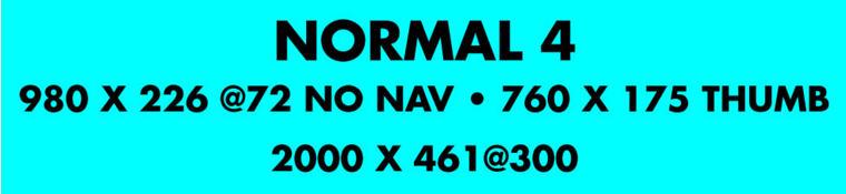Custom Nerf Photo Banner