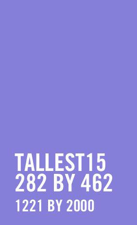 Adult Purple & Black Thigh High Stockings