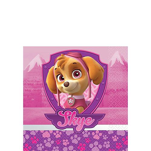 Pink PAW Patrol Party Supplies - PAW Patrol Party  403ddd2d1b0cc